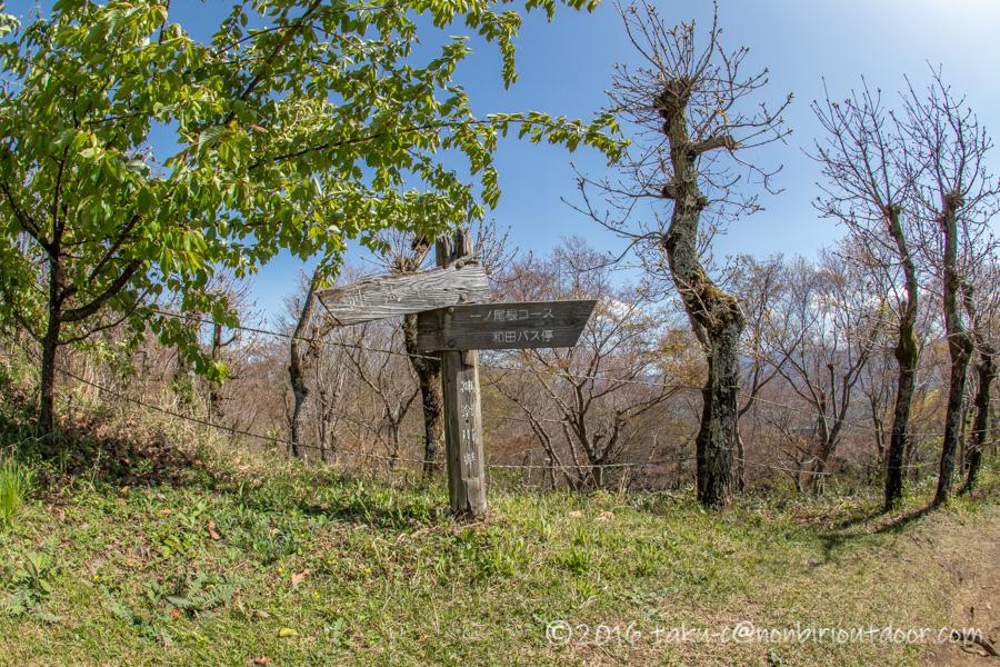 陣馬山山頂の景色
