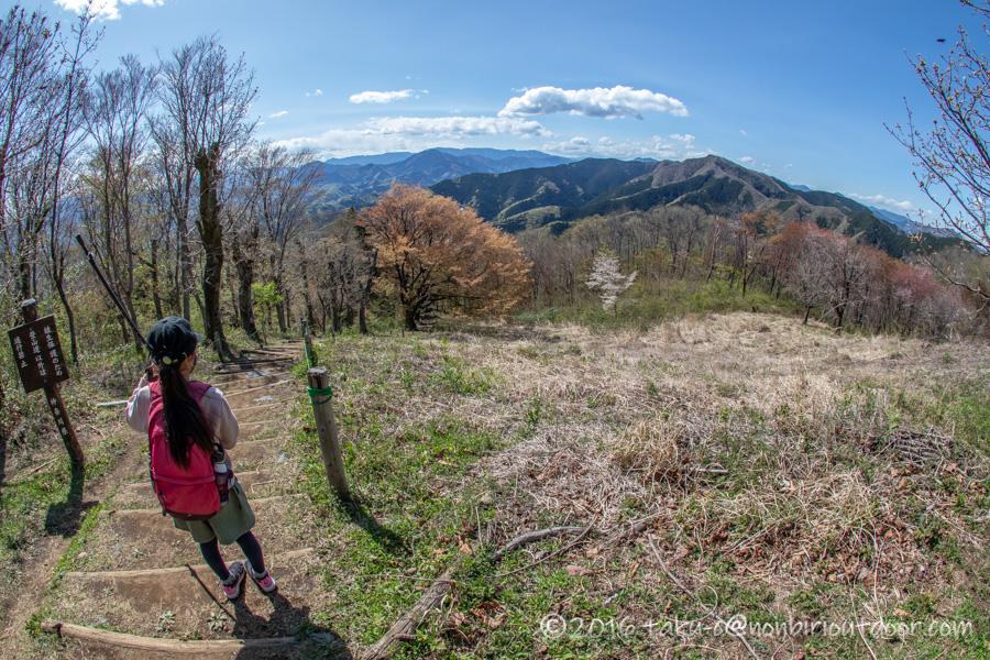 陣馬山山頂からの眺め