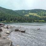 初の芦ノ湖でのトラウトフィッシングはウェーダーでショアジギング!