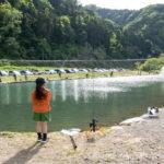 子供の管釣りデビューw小学3年生でもFF中津川で初釣果!