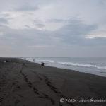 茅ヶ崎西浜海岸にてショアジギング!ワカシが釣れました!