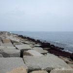茅ケ崎西浜海岸の石積みにてナブラ打ちを狙ってみるが。。。