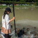 FF中津川にて夏休みの父子管釣り!この日は凄く濁ってた(苦笑)